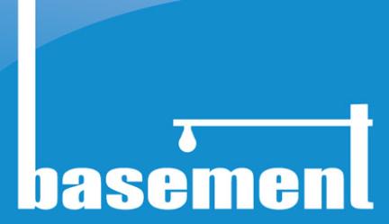 Basement Designs